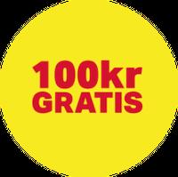 100 kr - 12193
