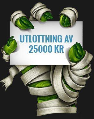 Casino bonus utan - 40969
