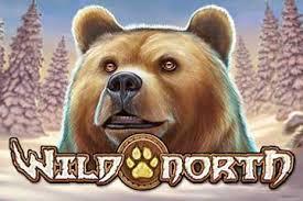 www Wild North - 10862